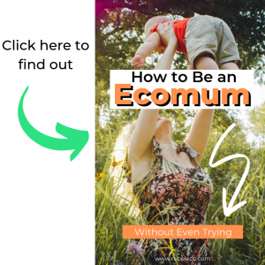how_to_be_an_ecomum