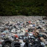 The Plastic Problem – 7 ways you can help